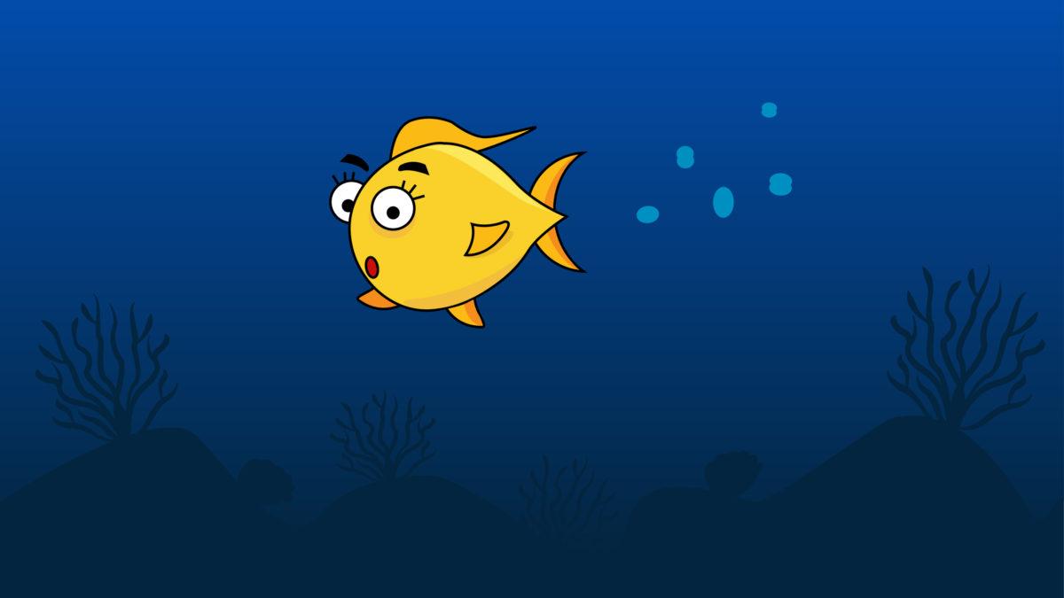 zlota-rybka-czyli-nowy-projekt-1